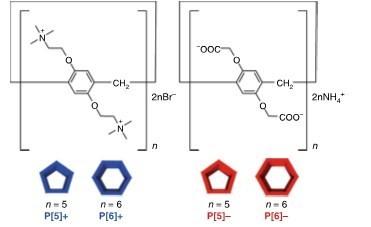 Kanazawa University Research: Self-sorting Through Molecular Geometries